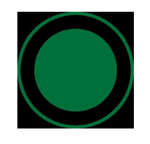 Green bullet